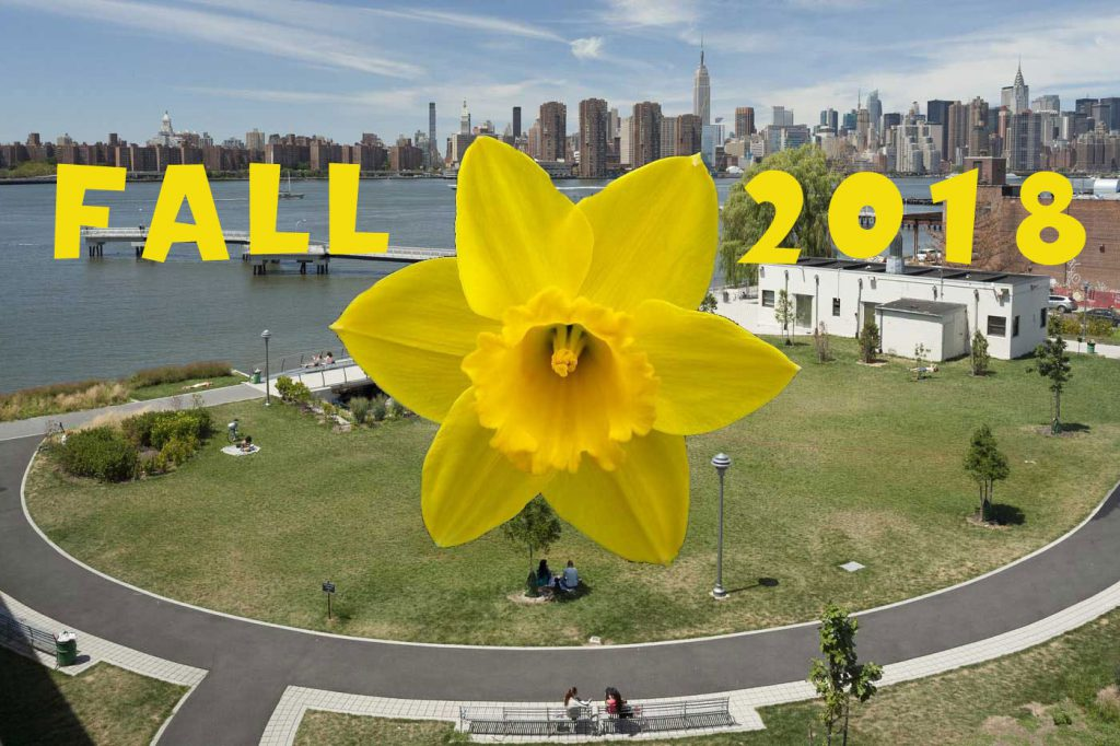 Daffodil Planting Transmitter Park Fall 2018